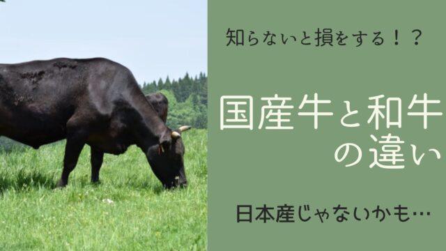 国産牛と和牛の違い